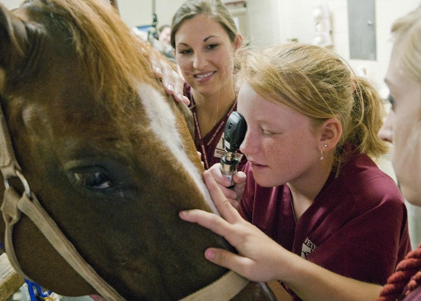 Mississippi State University College of Veterinary Medicine student Susannah Brent, left, shows vet camp participant Santana Shelton how to use an ophthalmoscope to examine a horse's eye. (Photo by MSU College of Veterinary Medicine/Tom Thompson)
