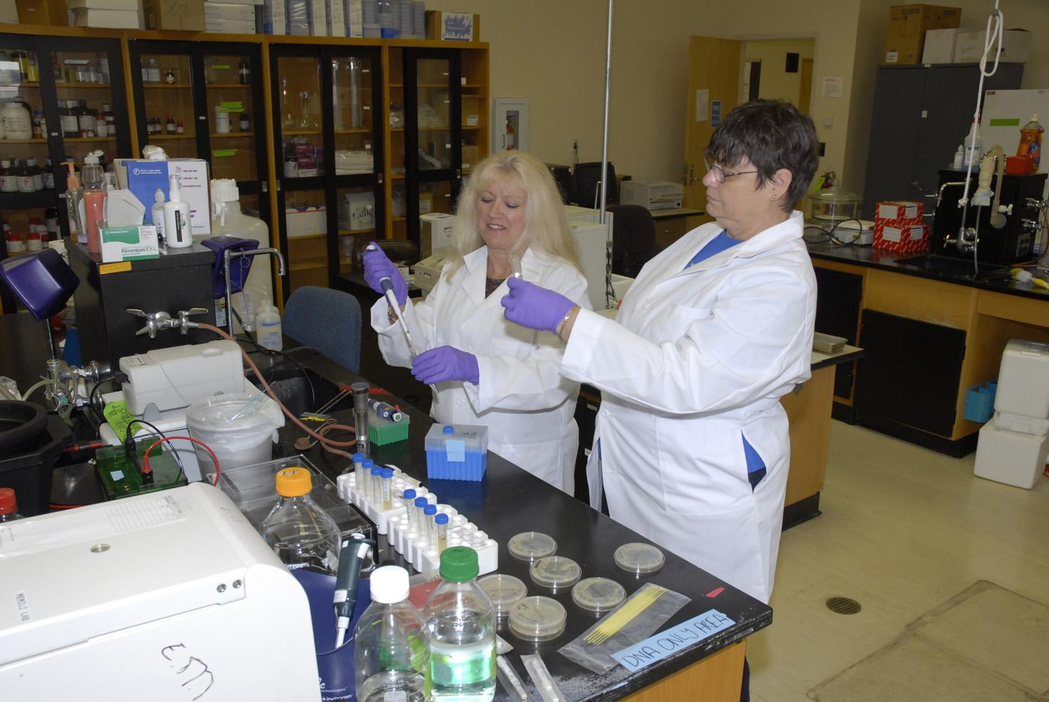 Eighth-grade science teachers Judy Harden of Saltillo (left) and Joan Estapa of Bay Saint Louis conduct experiments during an intense two-week course in functional genomics and biology at Mississippi State University. The teachers were taking part in a Research Experience for Teachers grant under the supervision of an associate professor in MSU's Department of Animal and Dairy Science. (Photo by MSU Ag Communications/Linda Breazeale)