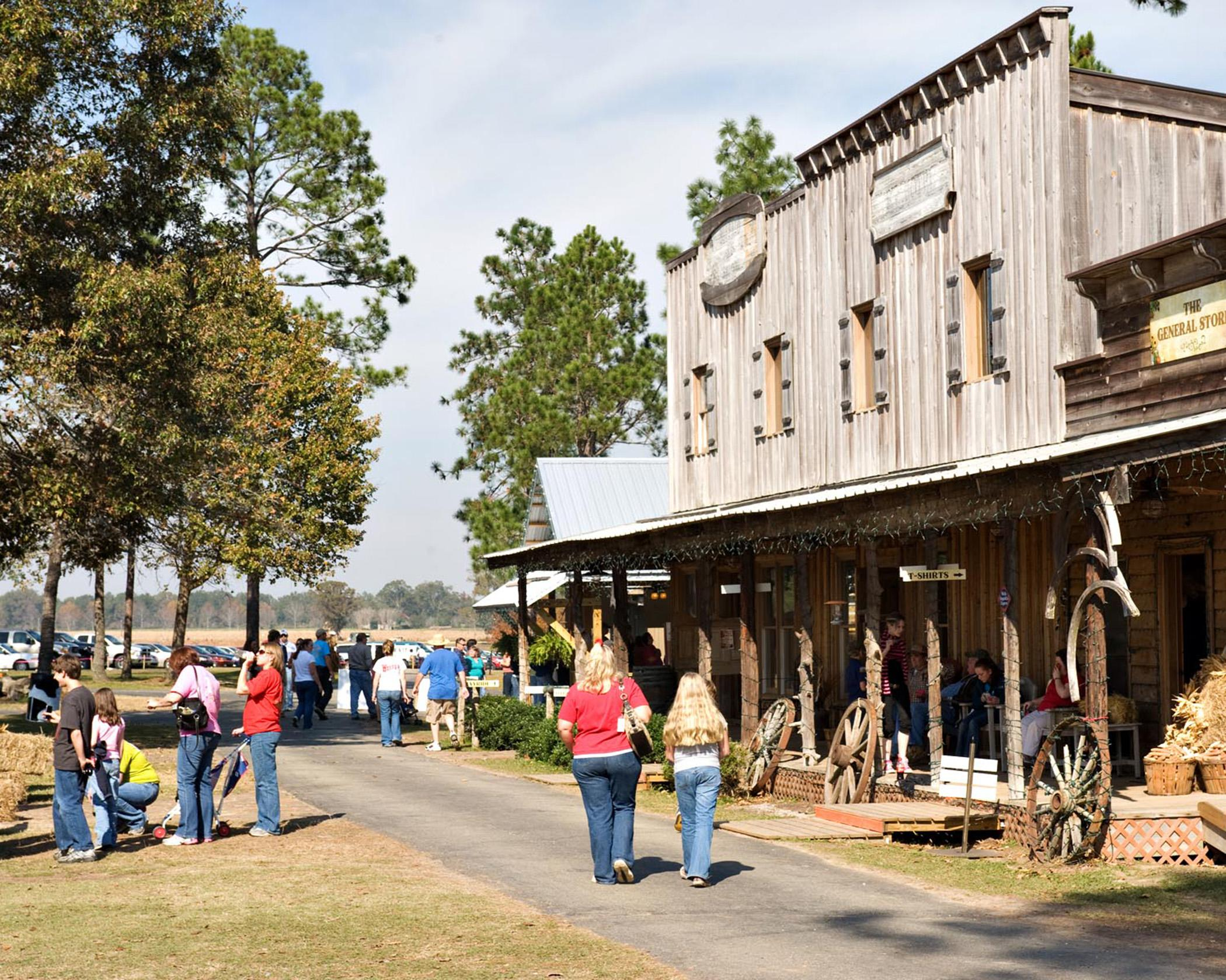 Agritourism is increasing in popularity as Mississippi farmers and landowners look for ways to diversify income and share their passion for agriculture. One such business, Bluejack Ridge Kids Ranch near Poplarville, Miss., offers Western-themed fun on weekends in October with activities such as a corn maze, petting farm, wagon train and zip line. (Submitted Photo)