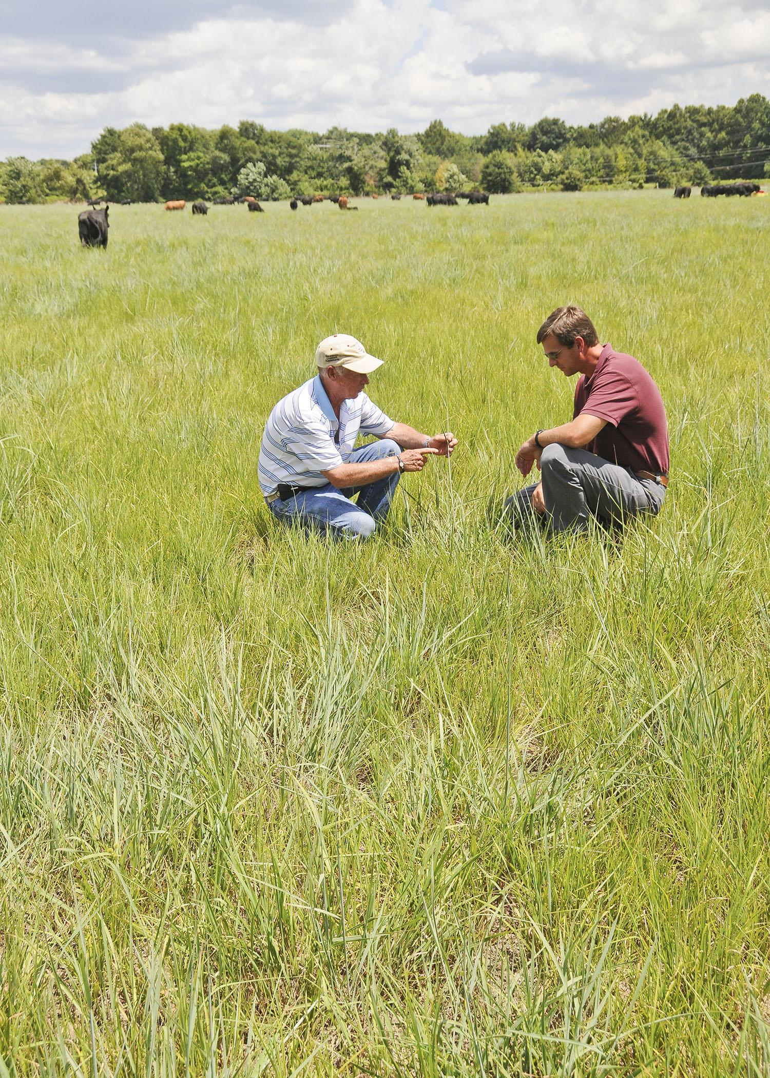 Durwood Gordon, left, and Judd Gentry examine the native-grass pasture in Gordon's intensive grazing operation in Panola County. Gordon Farms is participating in Mississippi State University's REACH program. (Photo by MSU Ag Communications/Scott Corey)