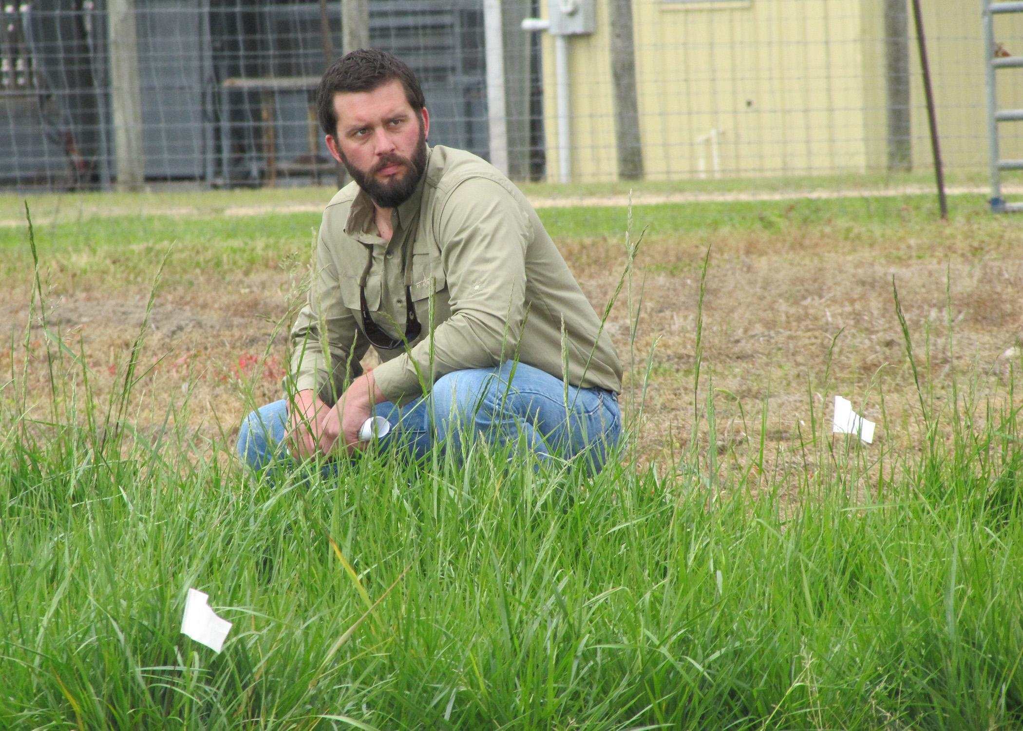 Jesse Morrison, Mississippi State University doctoral student and research associate, looks over a plot of eastern gamagrass. He joined an elite group of graduate students and scientists from around the country taking part in a program to raise awareness and support in Congress for science and research funding. (Submitted photo)