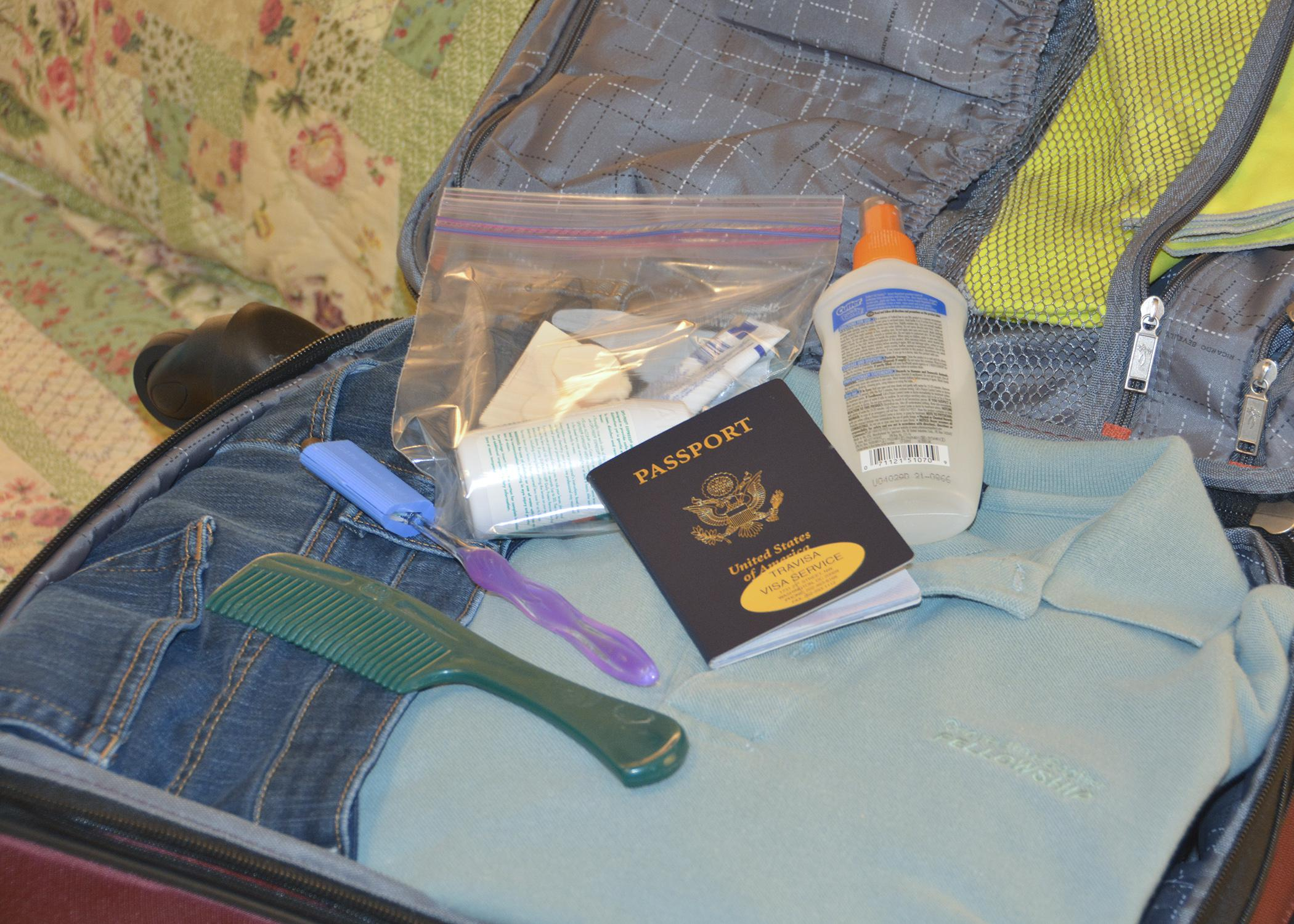 Include insect repellent when packing bags, especially when traveling to tropical or Third World regions. (Photo by MSU Ag Communications/Linda Breazeale)