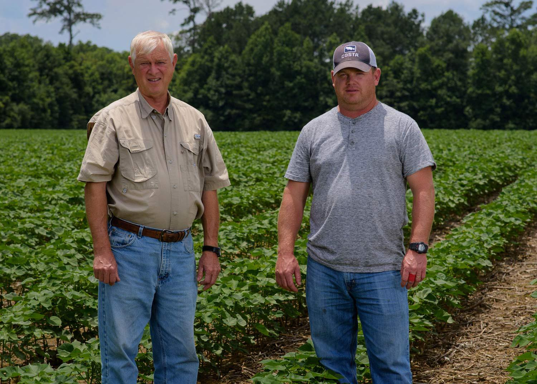 Two men standing in a row crop.