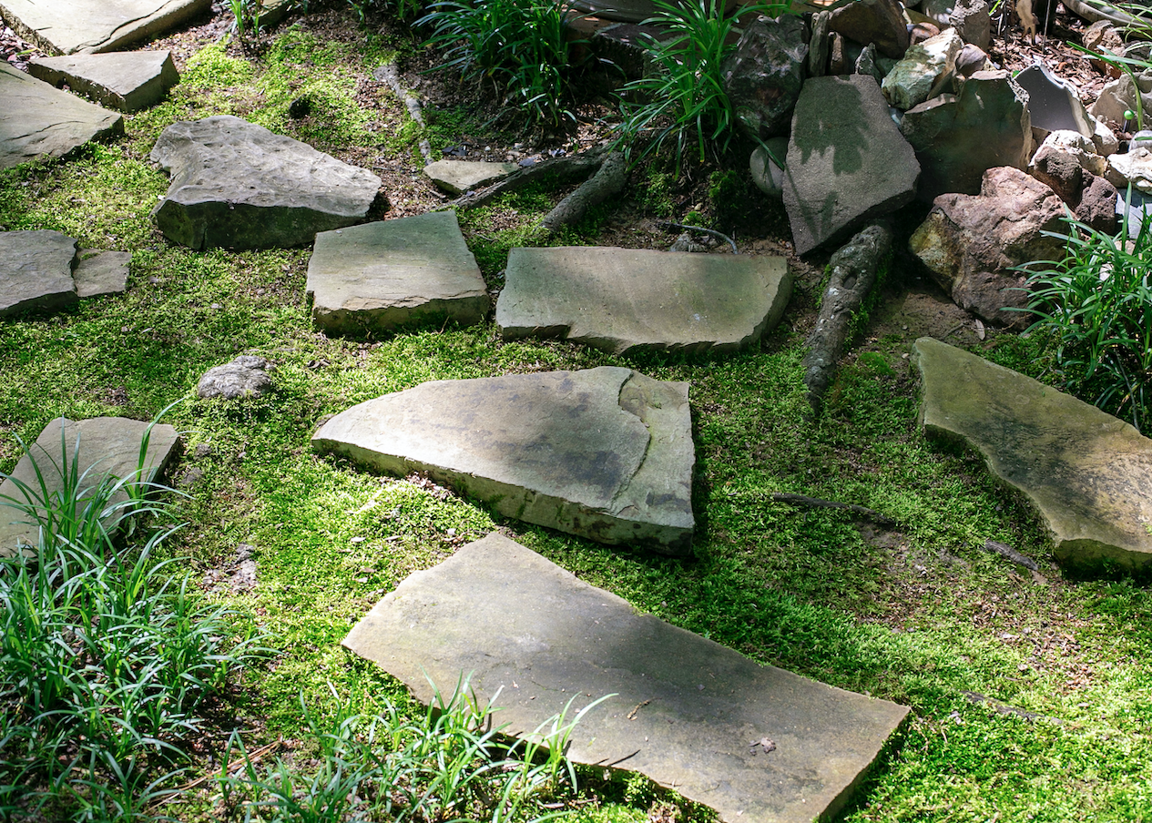 A bright green moss pathway with large pavers.