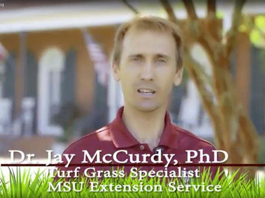 headshot of Dr. Jay McCurdy, PhD