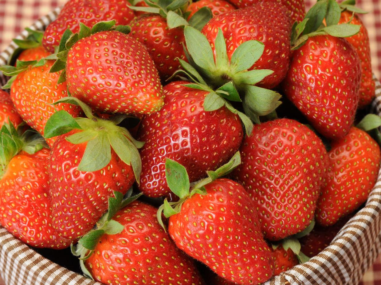 Mississippi's strawberry growers are finding that consumers prefer the taste of the state's fresh berries. (Photo by Kat Lawrence)