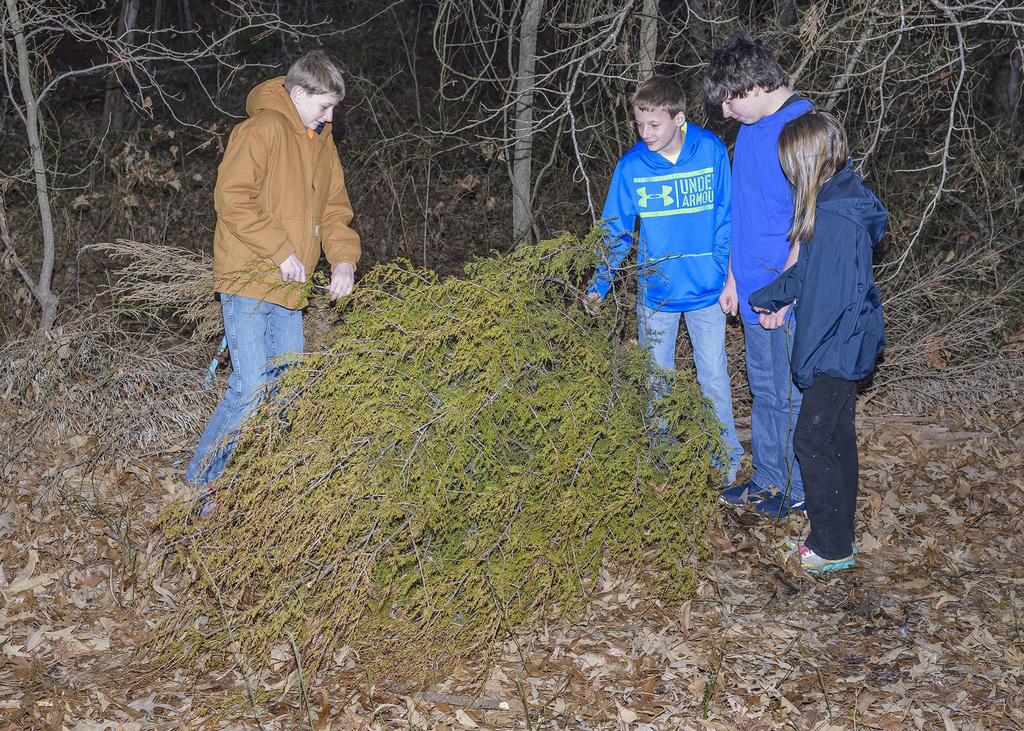 Ben Carr of Ackerman, left, helps his brother Pete, cousin Max Hudson of Louisville and sister Carrie move their grandfather's Christmas tree to the edge of his yard for wildlife cover on Jan. 7, 2015. (Photo by MSU Ag Communications/Kevin Hudson)