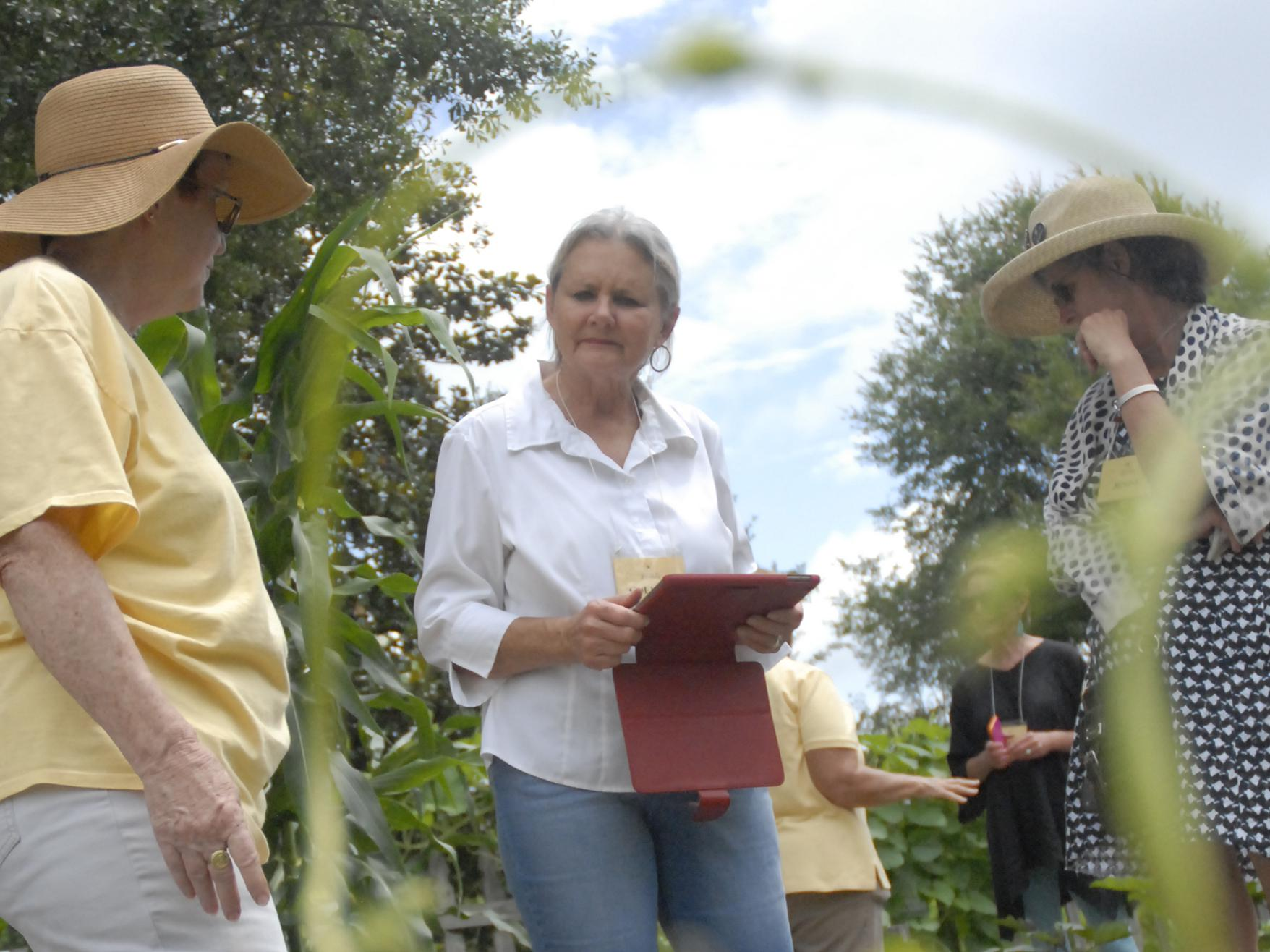 Colleen Wilkins, owner of Sunnyside in Natchez, gathers ideas while visiting the Southern Heritage Garden at the Vicksburg National Military Park on June 13, 2017. (Photo by MSU Extension Service/Bonnie Coblentz)