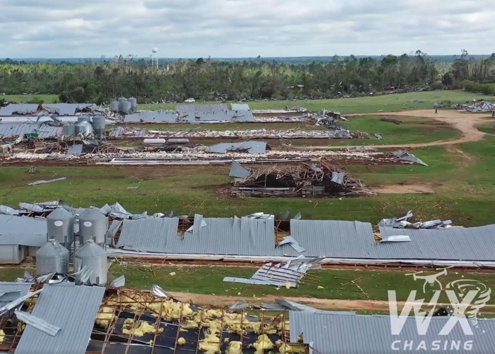 Metal roofs of poultry houses lie on the ground in rows amid twisted metal and debris.