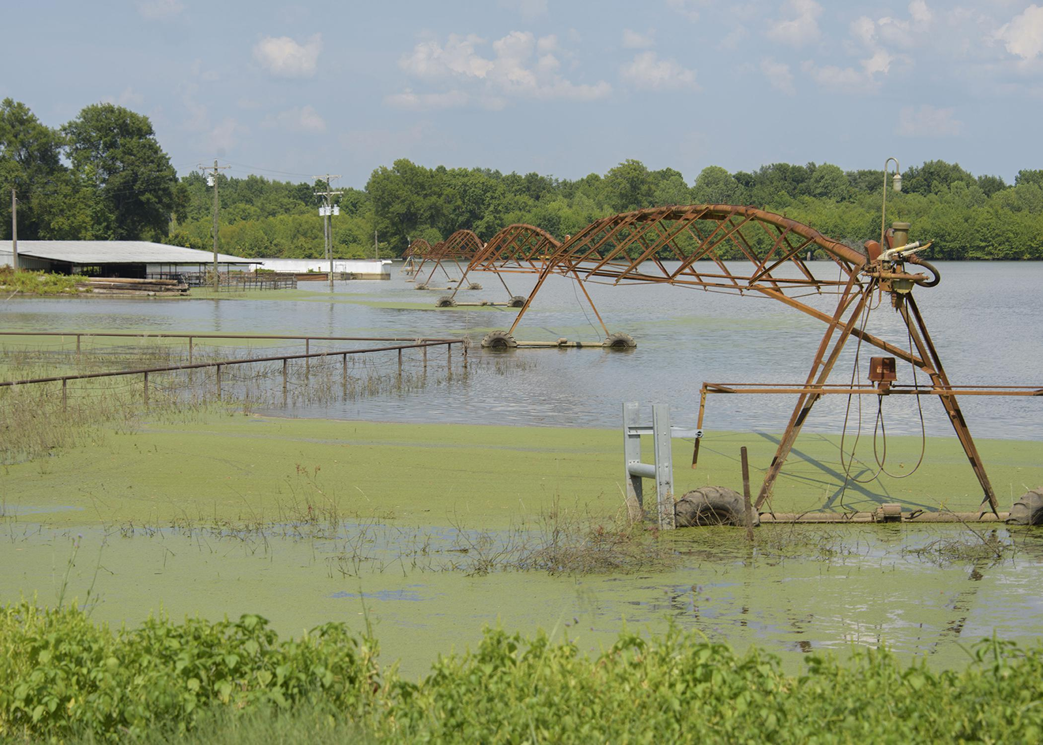 A pivot irrigation system stands in algae-covered water in a flooded field with farm buildings in the distance.