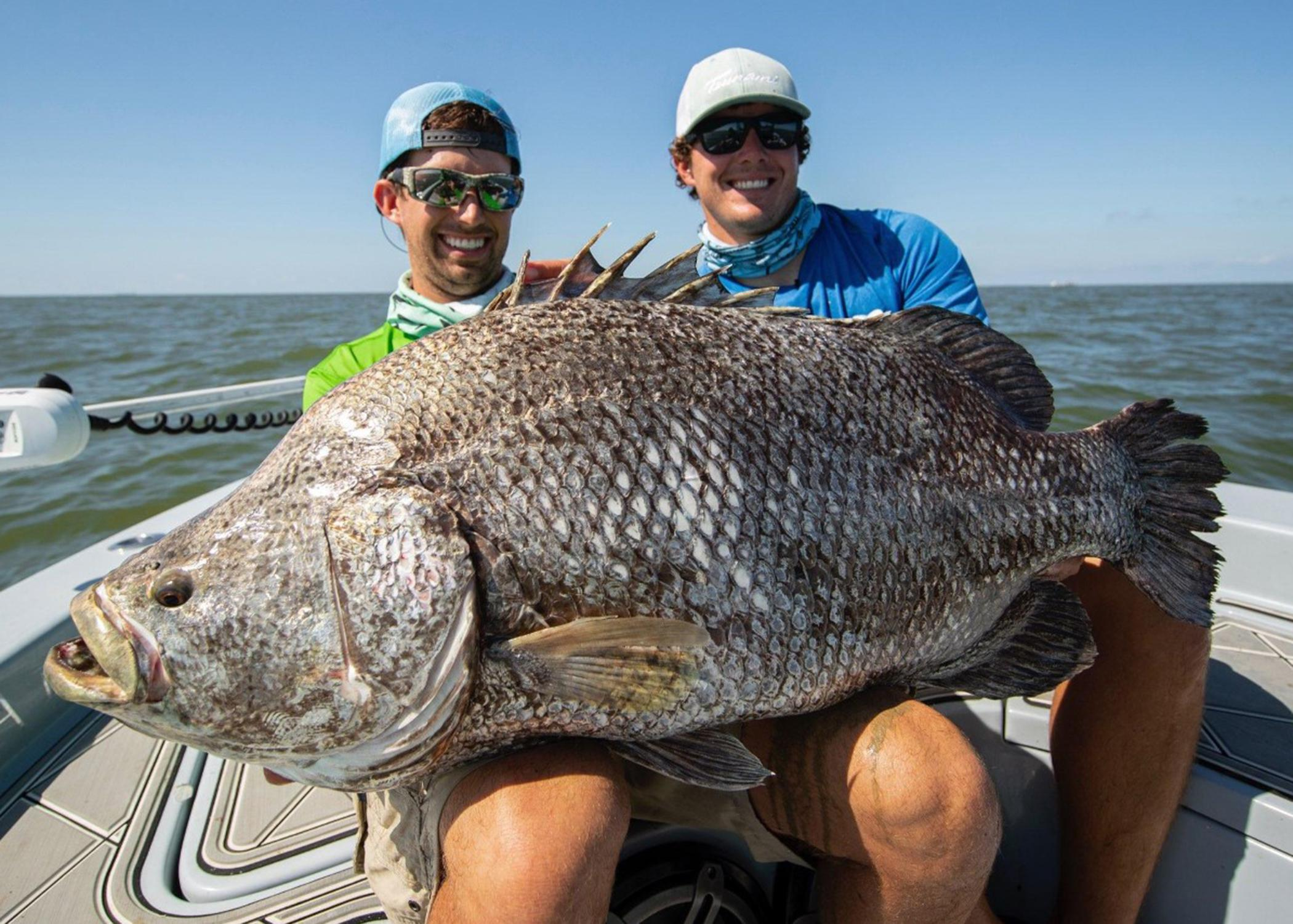 Two men in a boat pose with a large fish in their laps.