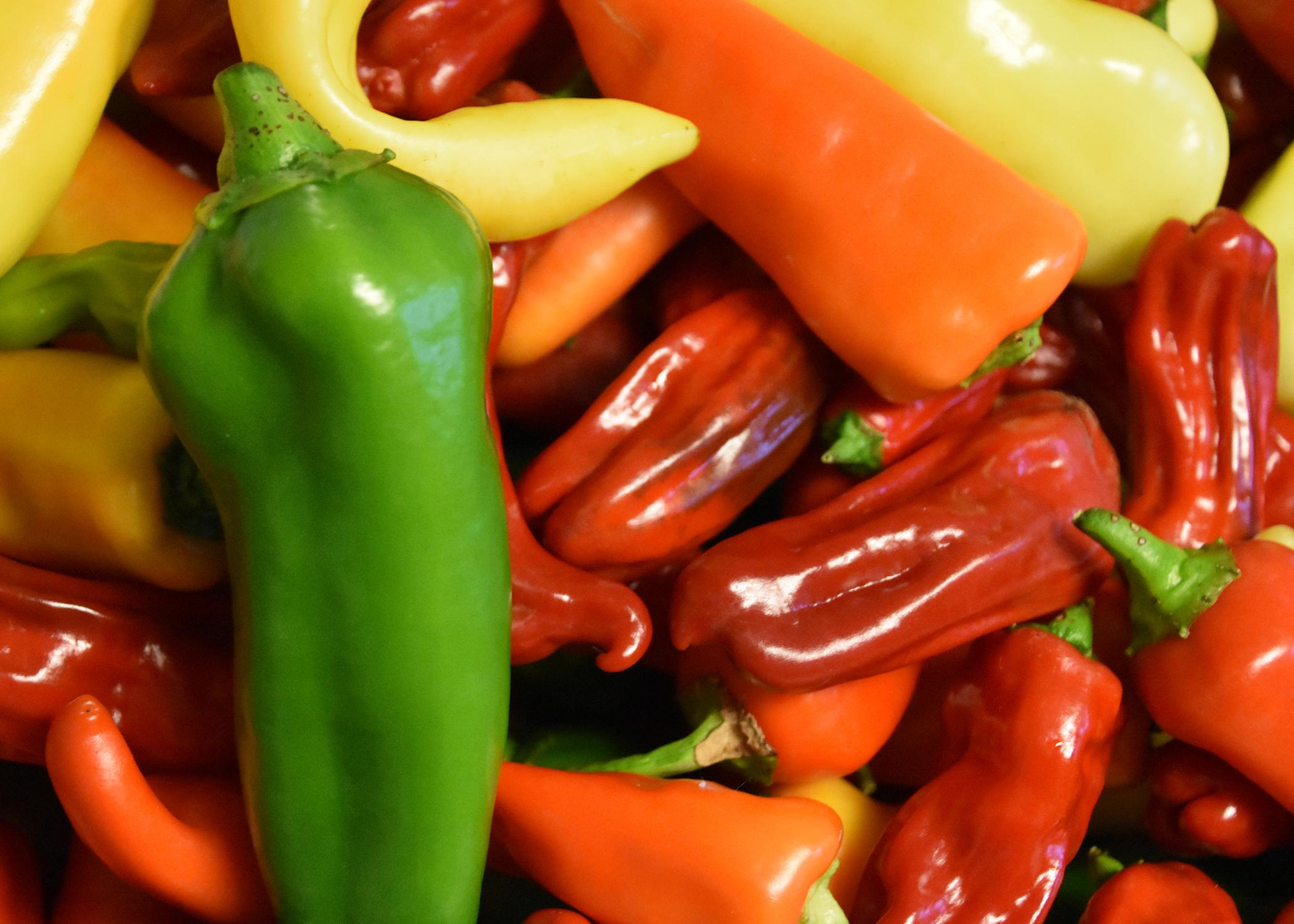A slender, green pepper sits atop a collection of yellow, red and orange peppers.