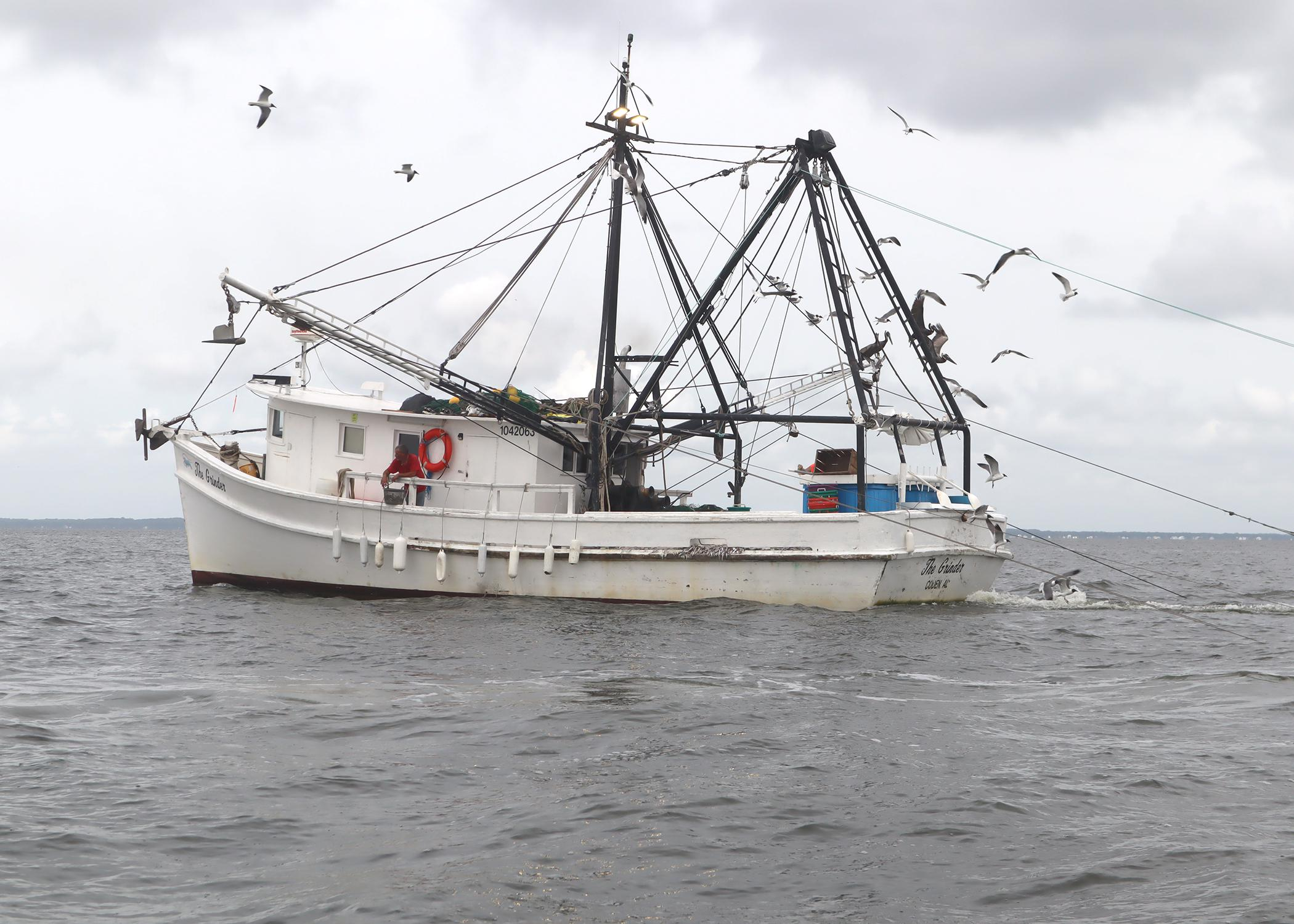Fishing vessel trawls multiple nets for shrimp.