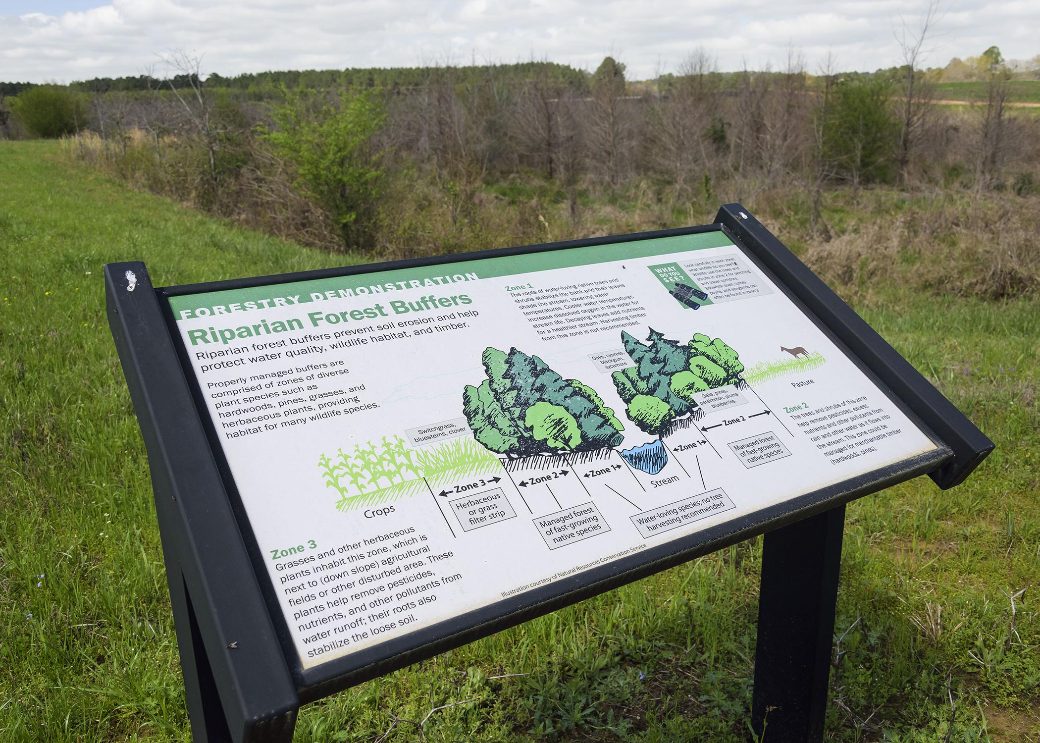 Educational signs, such as this one on properly managing riparian forest buffers, are placed at each demonstration area at the Coastal Plain Branch Experiment Station in Newton, Mississippi. Three of the planned five demonstration areas are complete, including the backyard habitat, the nature trail and lake, and an 80-acre mixed pine and hardwood timber stand. (Photo by MSU Ag Communications/Kevin Hudson)