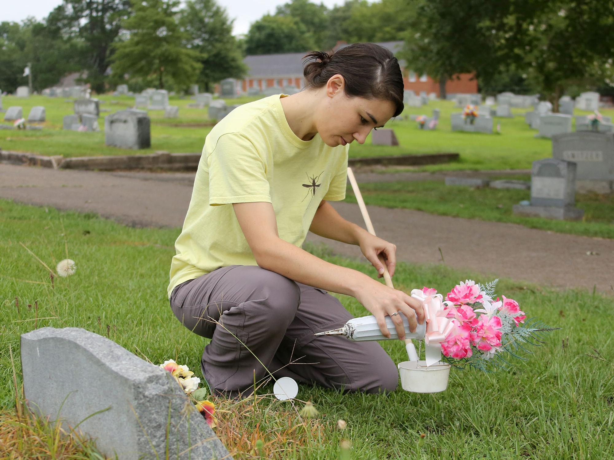 Gail Moraru, a research associate with the Mississippi State University Extension Service, collects mosquito larvae in water from a vase in Odd Fellows Cemetery in Starkville, Mississippi, on Aug. 10, 2016. Moraru and others workers with MSU Extension are collecting samples in 41 north Mississippi counties in an effort to pinpoint potential Zika-affected areas. (Photo by MSU Extension Service/Kat Lawrence)