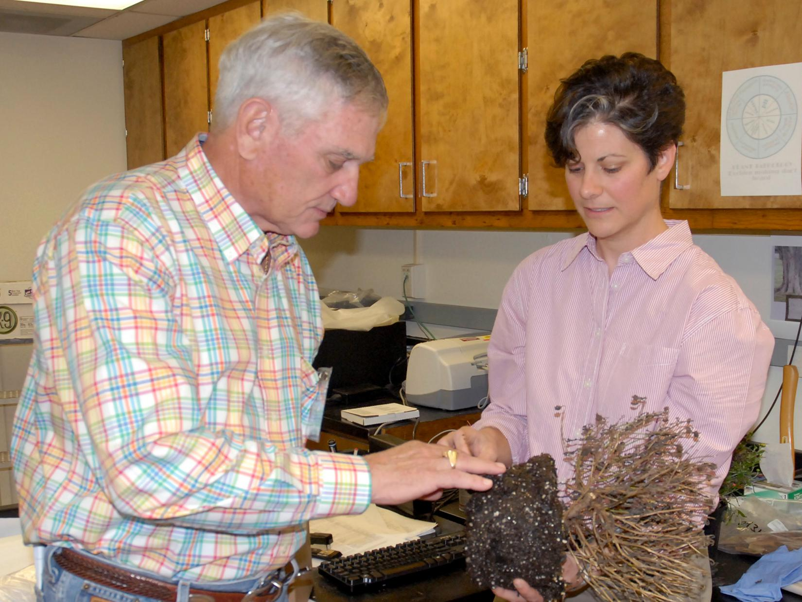 Lynn McMahan of Vancleave, past president of the Mississippi Master Gardeners, learns about plant diseases from Clarissa Balbalian, manager of the Mississippi State University Extension Service's plant diagnostic lab, during campus tours in 2013. (File photo by MSU Ag Communications/Linda Breazeale)