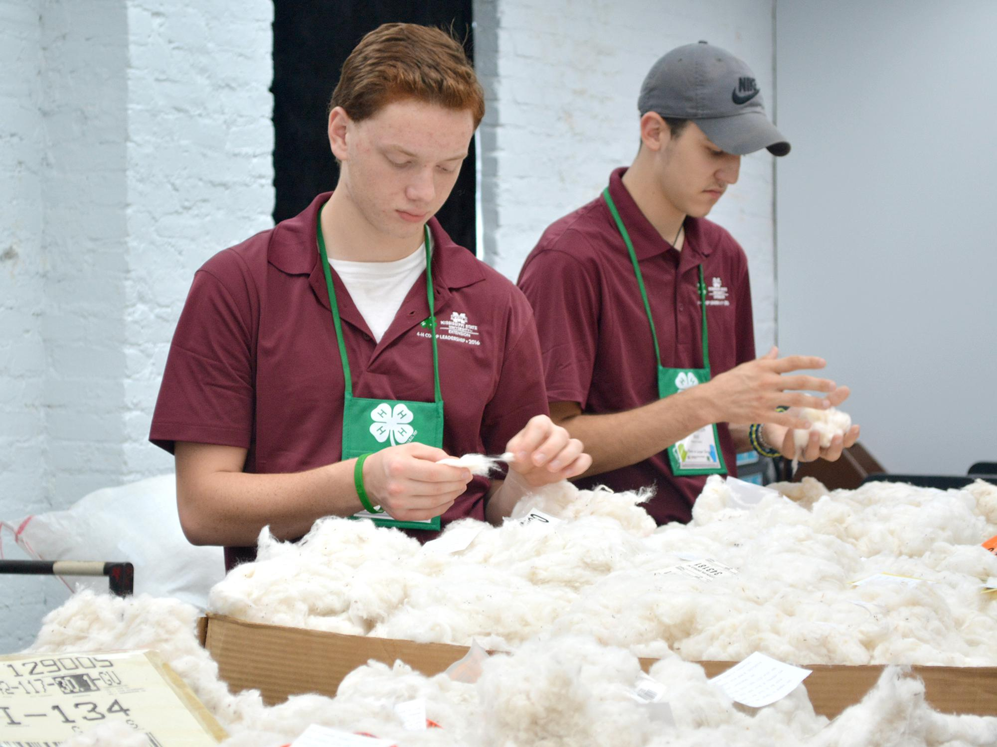 Thirty-four 4-H'ers learned leadership skills when they toured four co-ops as part of the 2016 Cooperative Business Leadership Conference. Here, Jonathan Pannell, left, of Alcorn County, and Thomas Heck of Hancock County examine cotton samples at Staplcotn in Greenwood. (Submitted Photo/Lauren Revel)