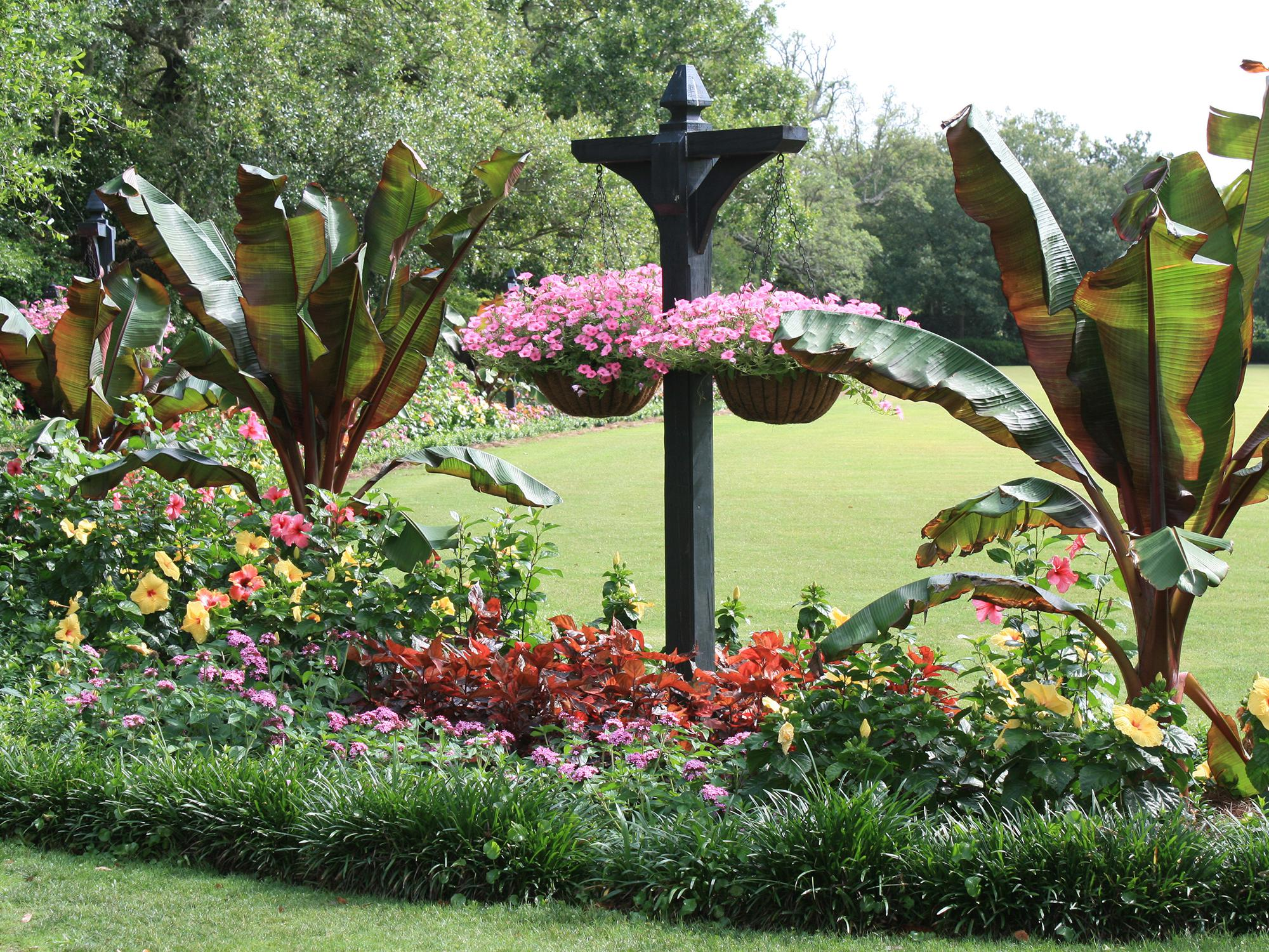 Mississippi State University Extension specialists will be on hand to present seminars for home gardeners on how to create landscapes like this one. (Photo by MSU Extension Service/Gary Bachman)