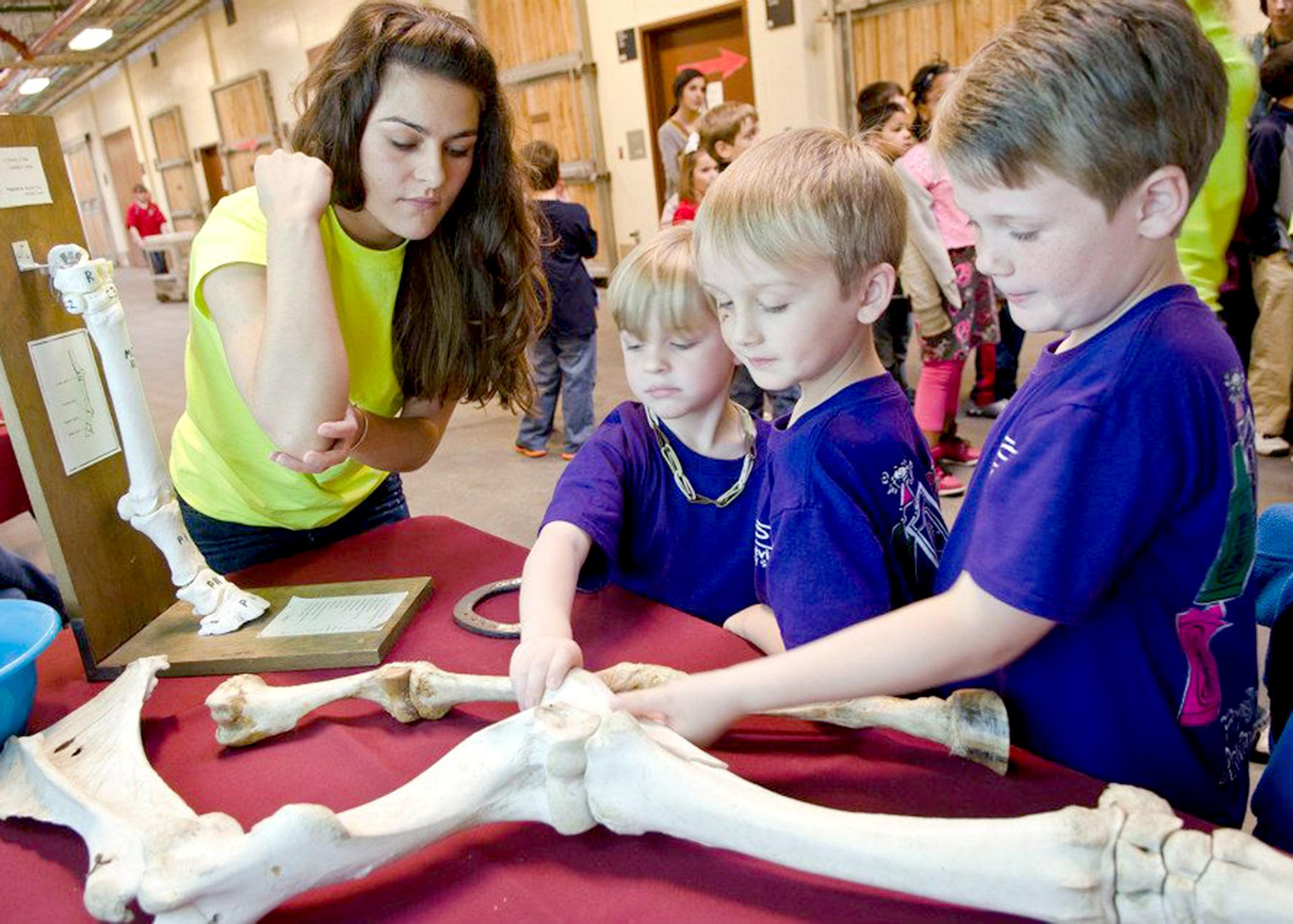 The Mississippi State University College of Veterinary Open House will welcome preregistered school groups April 4 and the general public April 5. Students can enjoy hands-on activities and demonstrations. (Photo by MSU College of Veterinary Medicine/Tom Thompson)