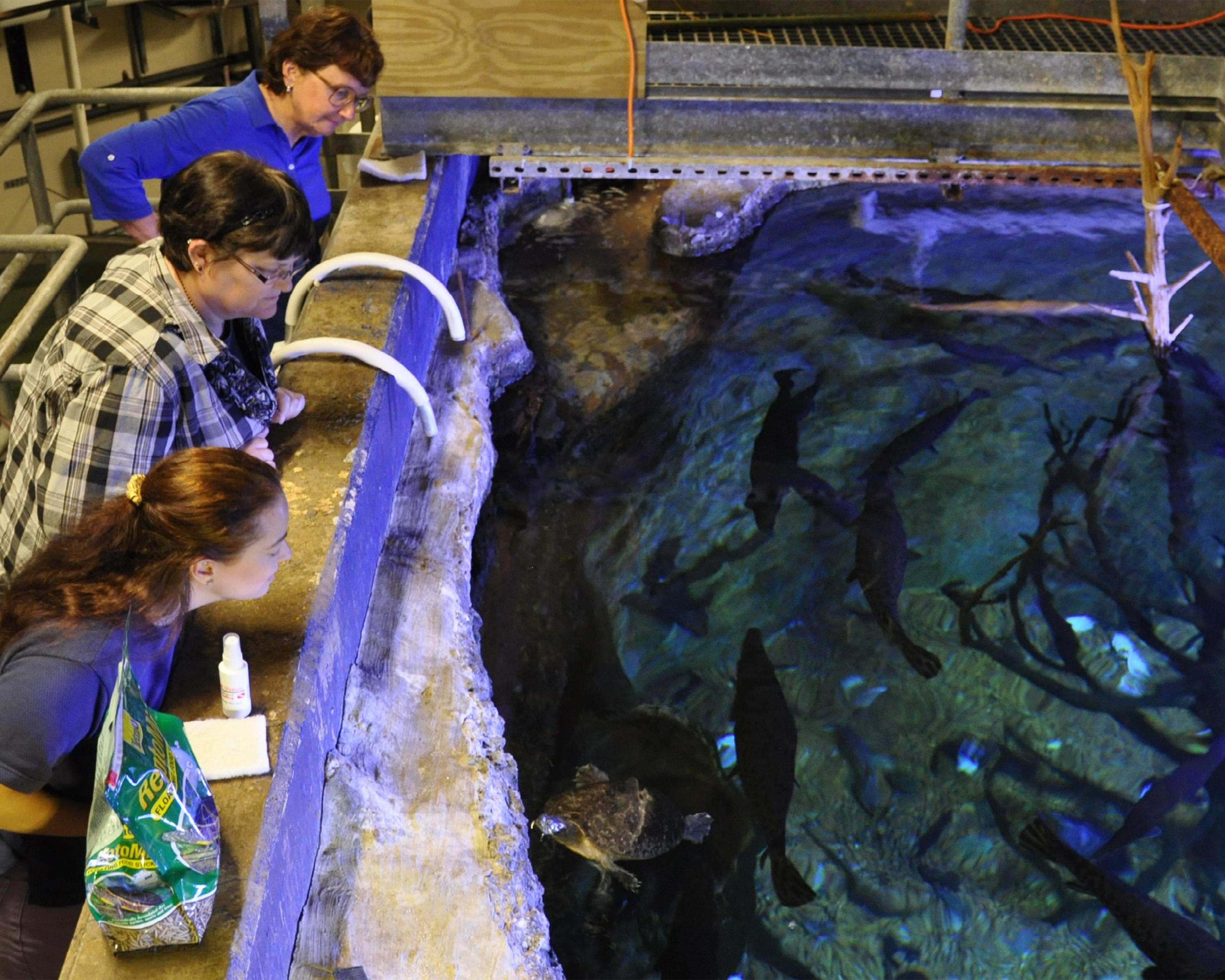 Master Naturalist class members get a behind the scenes tour of the aquariums at the Mississippi Museum of Natural Science during the 2014 training session last spring. The museum and the Mississippi State University Extension Service will offer the 2015 classes from April 21 through June 16. (File photo by MSU Extension Service/Adam Rohnke)