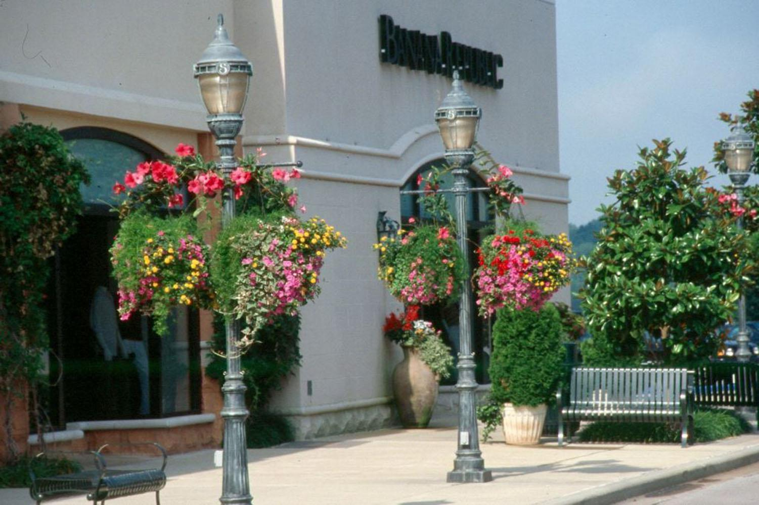 Gardeners can buy hanging baskets already blooming or make their own.