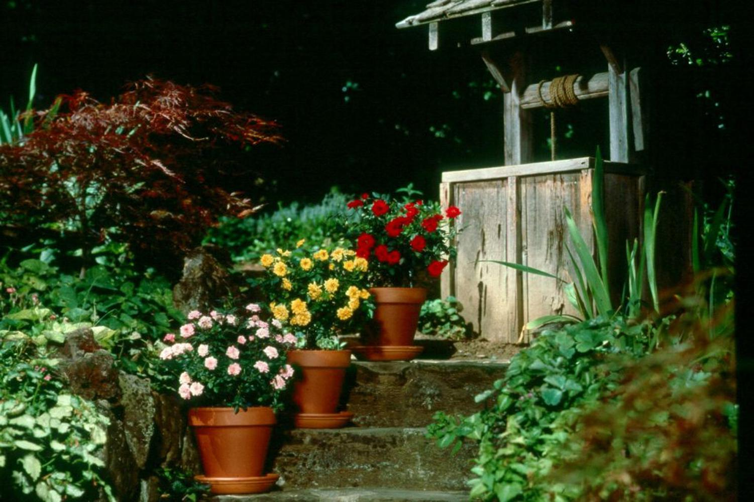 Containers may be the perfect place for small, manageable flower gardens. Stair-stepping containers at the home's entryway will make visitors feel welcome.