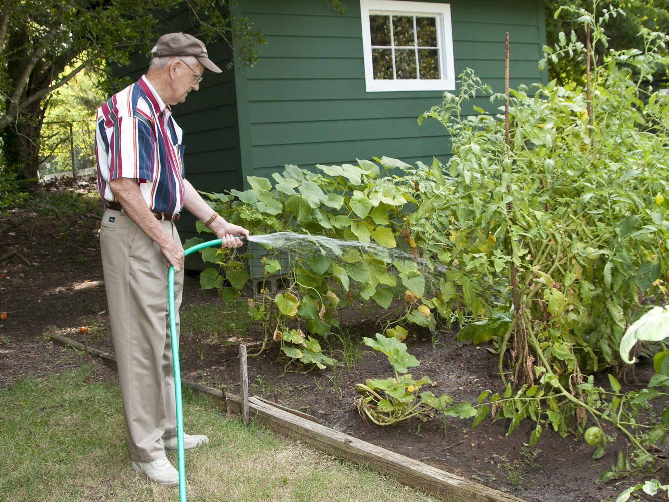 Harold Rone of Starkville uses a hose to water his garden when rainfall is not adequate. If the idea of a hose doesn't appeal to you, consider installing an irrigation system. (Photo by Scott Corey)