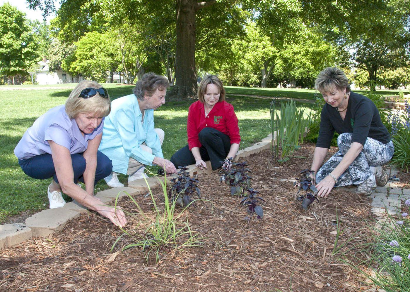 For some, gardening is a passion that leads to community service, but for others, gardening is just hard work. Lowndes County Master Gardeners, from left, Jean Wilson, Mary Faglie, Jennifer Duzan and Nell Thomas examine some of the herbs growing in the garden they renovated for the Culinary Institute at Mississippi University for Women. (Photo by MSU Ag Communications/Scott Corey)