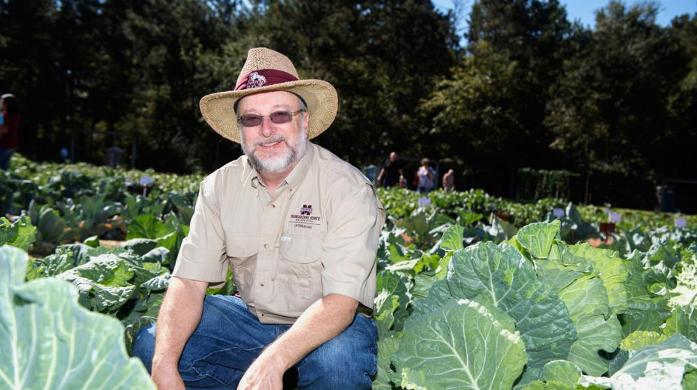 Dr. Rick Snyder, wearing khaki shirt and straw hat, sitting in cabbage field