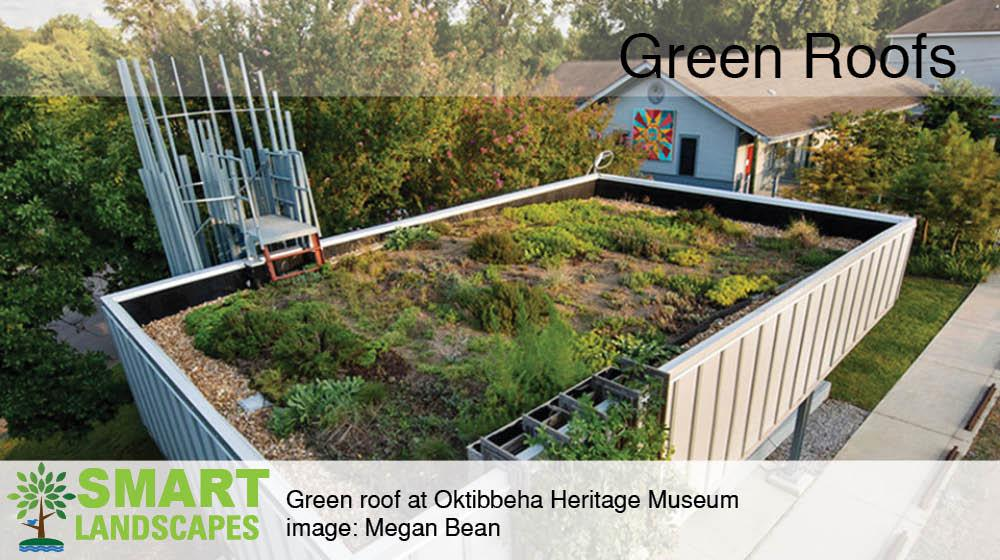 Green roof pavilion at the Oktibbeha County Museum