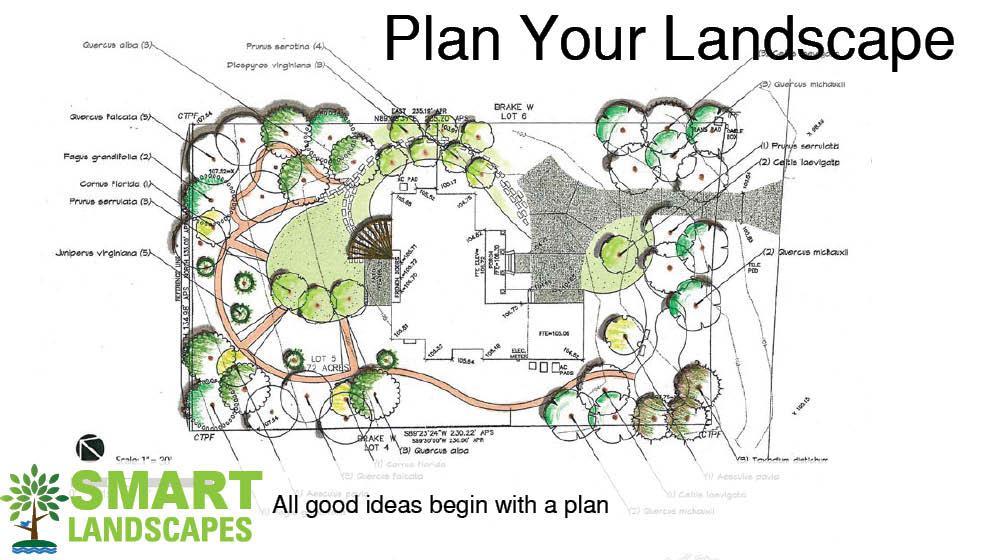 colored landscape plan