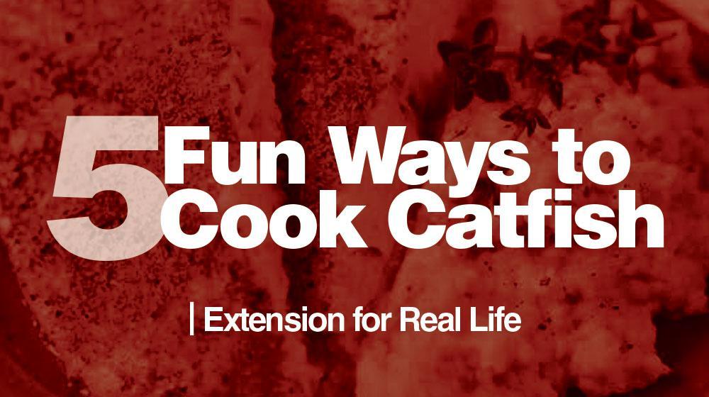 5 Fun Ways To Cook Catfish