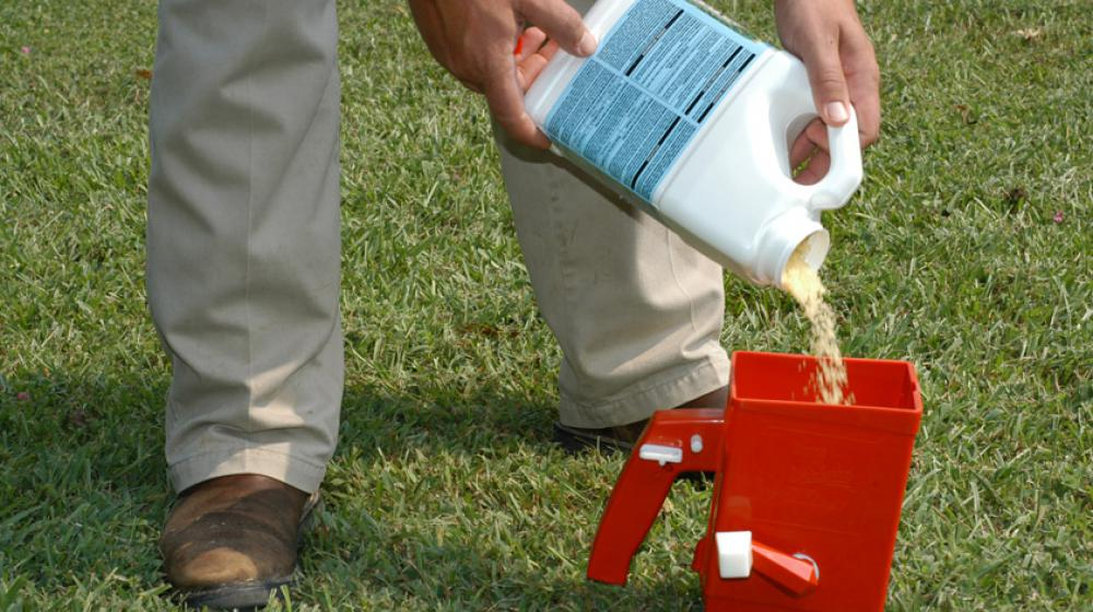 A man pouring granular bait into a red spreader on a green lawn.