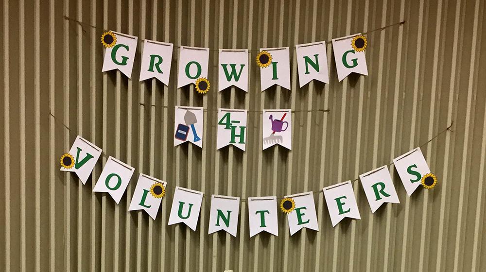 Growing 4-H Volunteers sign
