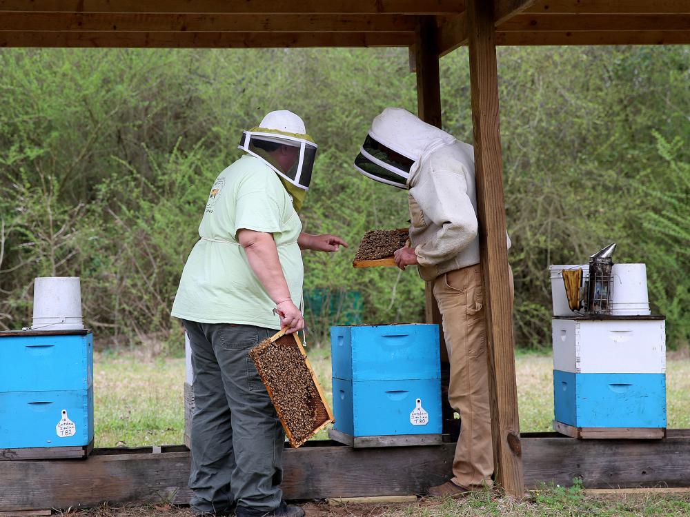Two men in beekeeping attire examine bee hive boxes.