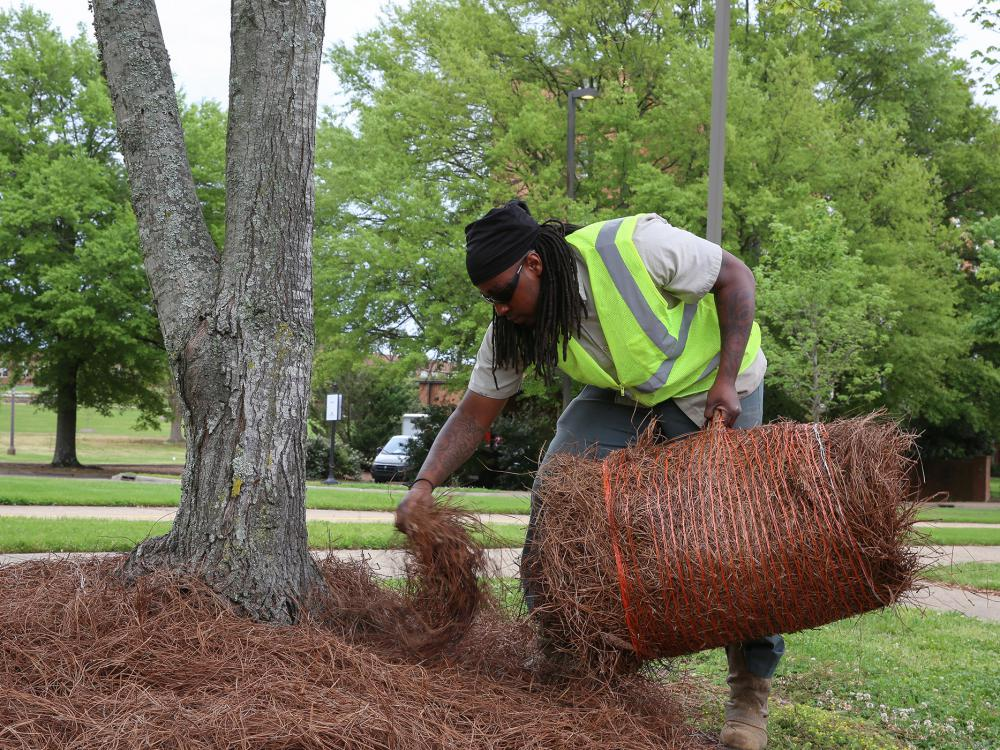 A man in a reflective vest leans over holding a bale of pine straw in one hand while using the other hand to spread pine straw on the ground.