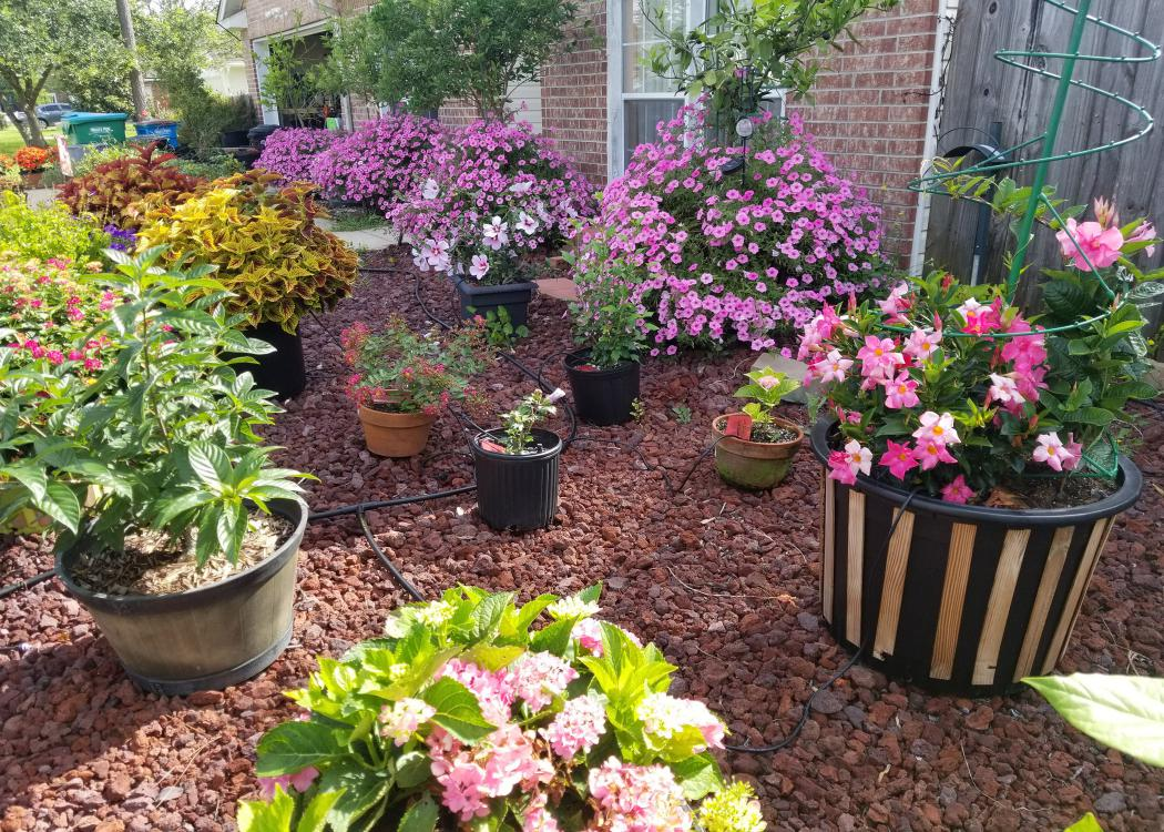 A variety of different sized and colored containers rest on a bed of gravel.