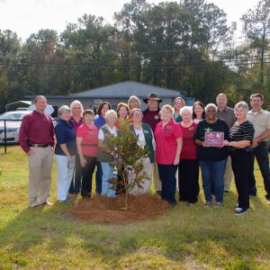 Eighteen adults, including 14 women and 4 men, stand behind a magnolia sapling with one woman toward the right holding an award plaque.