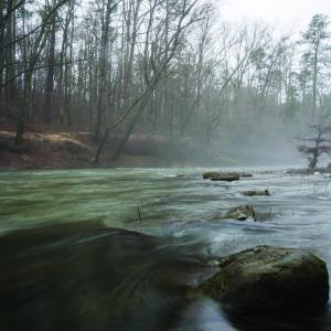 foggy stream with rocks and woods