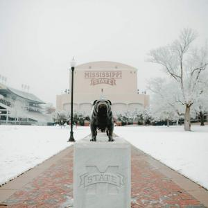 A wide shot of a bulldog statue in front of a football stadium. Brick walkway lined with white snow.