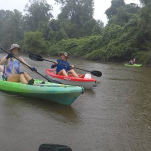Three women paddling two kayaks in dark brown water.