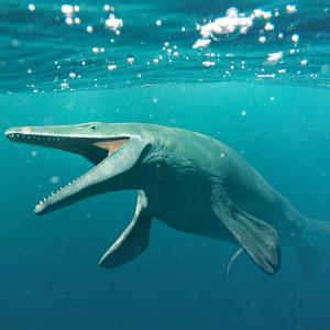 A prehistoric animal, like a marine iguana or a toothy whale, swimming through ocean.