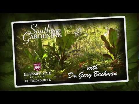 All-America Selections, Southern Gardening, Sept. 9, 2012