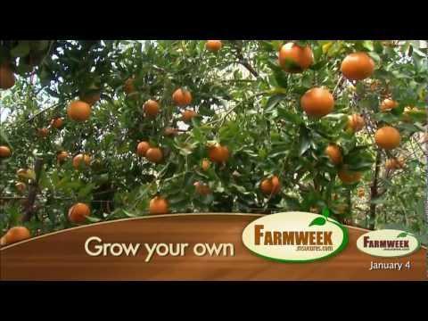 Farmweek - Entire Show - January 4, 2013