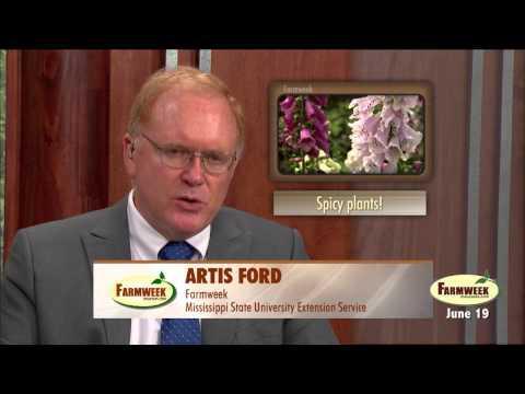 Farmweek, Entire Show, June 19, 2015