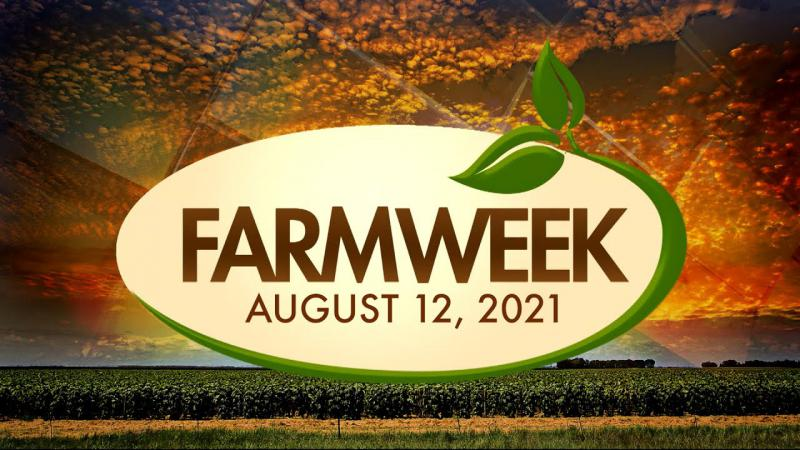 Farmweek   August 12, 2021   Full Show