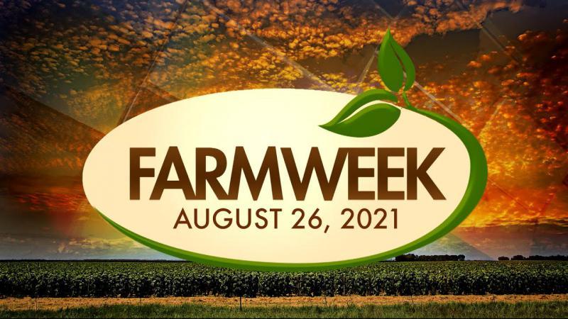 Farmweek   August 26, 2021   Full Show