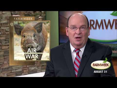 Farmweek | Entire Show | August 31, 2017