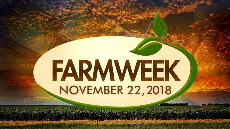 Farmweek | Entire Show | November 22, 2018