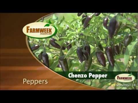 Farmweek - September 14, 2012 - Entire Show